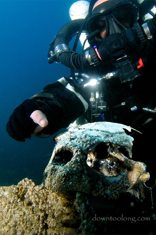 Sue checks out a large turtle skull on the wreck of the LANCING